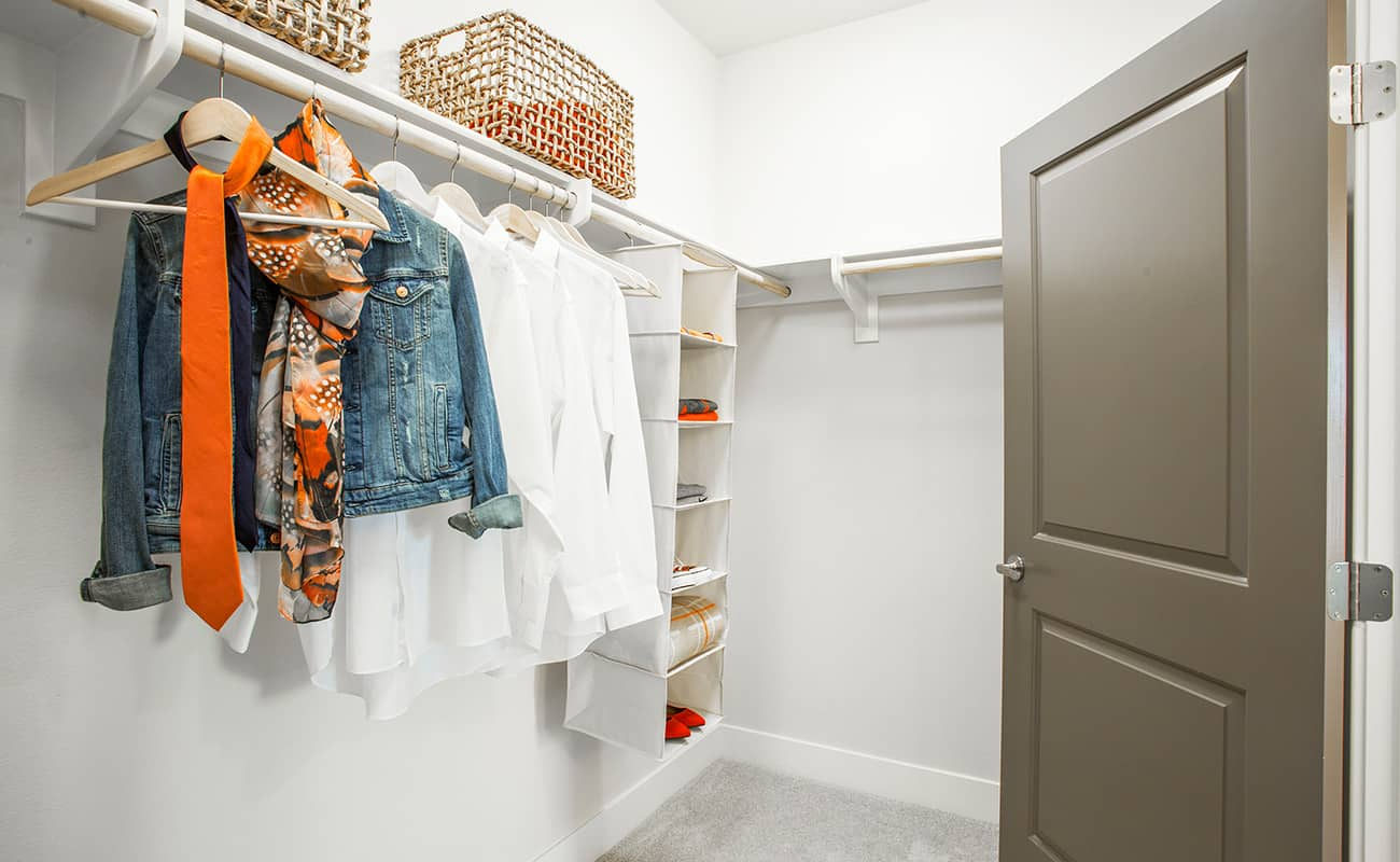The Colony at The Lakes-Walk-In Closet